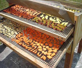 Conservarea fructelor prin deshidratare